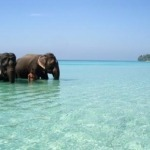 Five best destinations for beach holidays in India