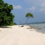 5 Best Beach destinations in India